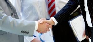 Merger & Acquisition Consulting300135
