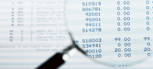 SEC Services – Reporting or Audits