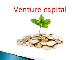 Venture Capital, the 7 Secrets Your Big CPA Firm Won't Tell You